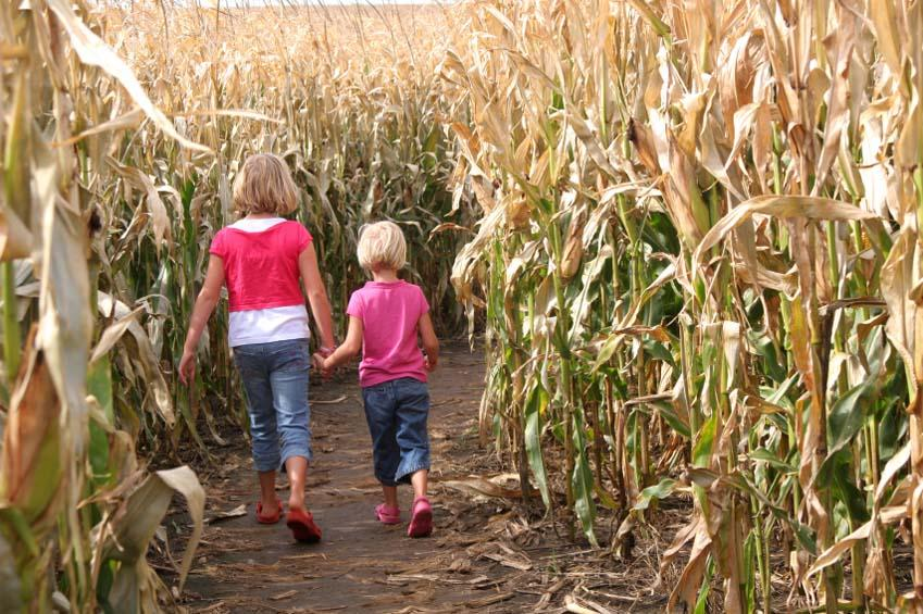 https://cf.ltkcdn.net/travel/images/slide/123490-849x565-Corn_Maze_Sisters.jpg