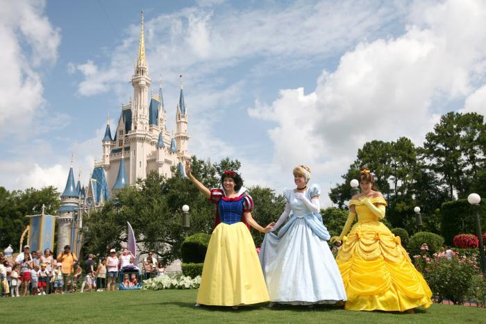 https://cf.ltkcdn.net/travel/images/slide/169809-700x467-Walt-Disney-World-castle.jpg
