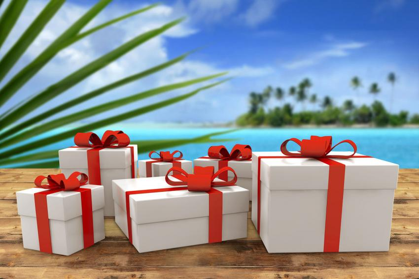 https://cf.ltkcdn.net/travel/images/slide/205693-850x567-gift-for-traveler.jpg