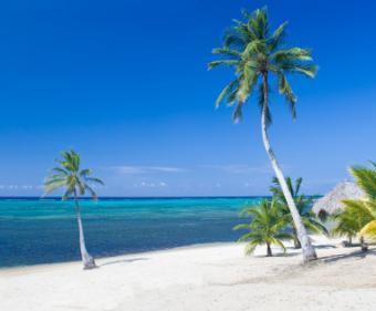 Guanaja Resort