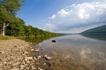 candice lake