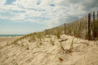 East Hampton Beach