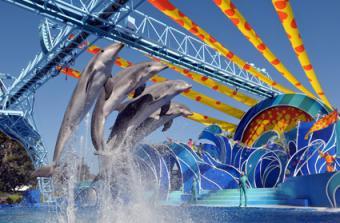 San Diego Vacation Ideas