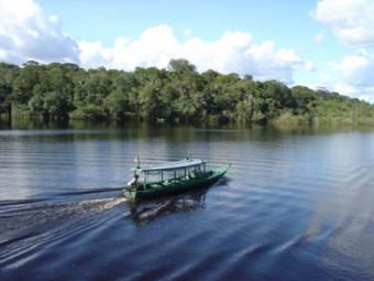 Cruising the Amazon