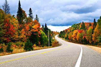 https://cf.ltkcdn.net/travel/images/slide/196905-850x564-highway-with-fall-foliage.jpg