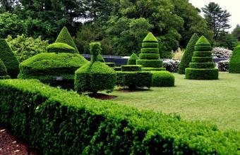 https://cf.ltkcdn.net/travel/images/slide/196915-800x517-Topiary-Garden-at-Longwood-Gardens.jpg