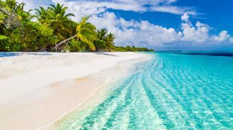Dominican Republic Travel Advisories