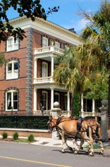 Charleston horse carriage rides