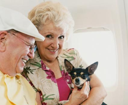 woman holding dog on plane