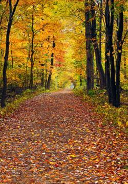 Cuyahoga Valley walk