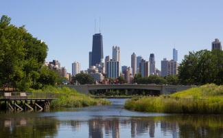 Chicago Skyline from Lincoln Park Zoo