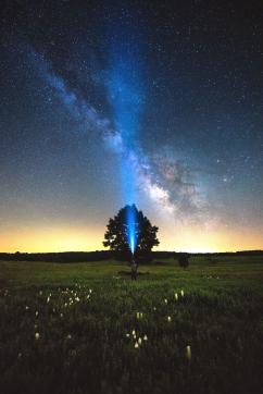 Night Sky Festival