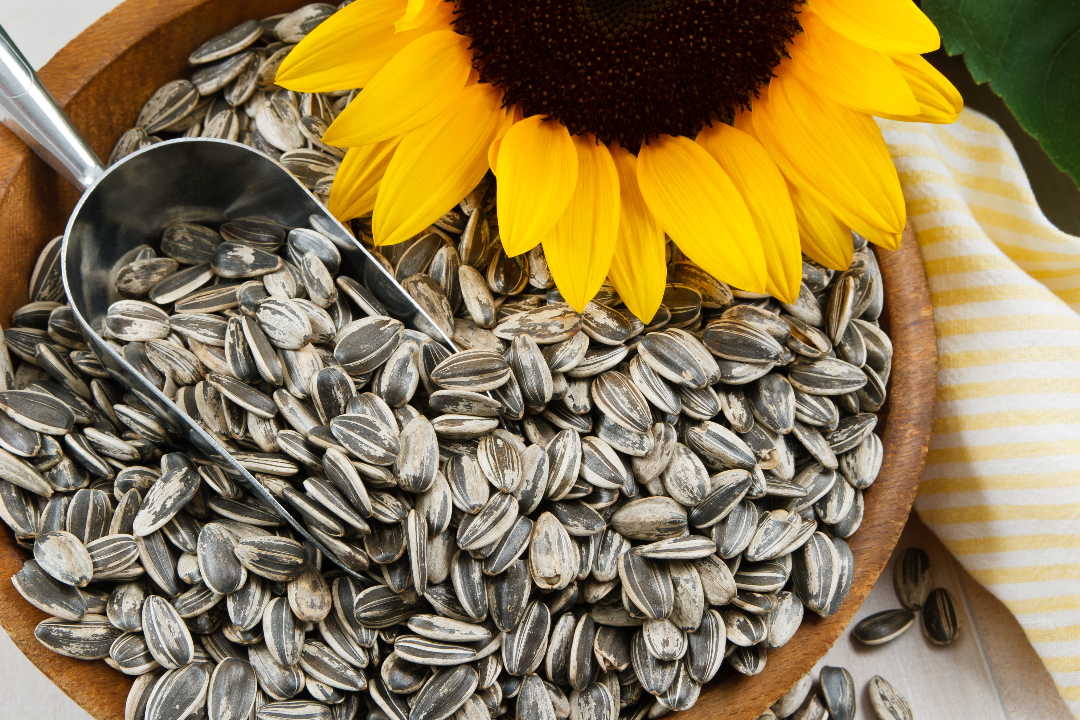 Can You Eat Too Many Sunflower Seeds