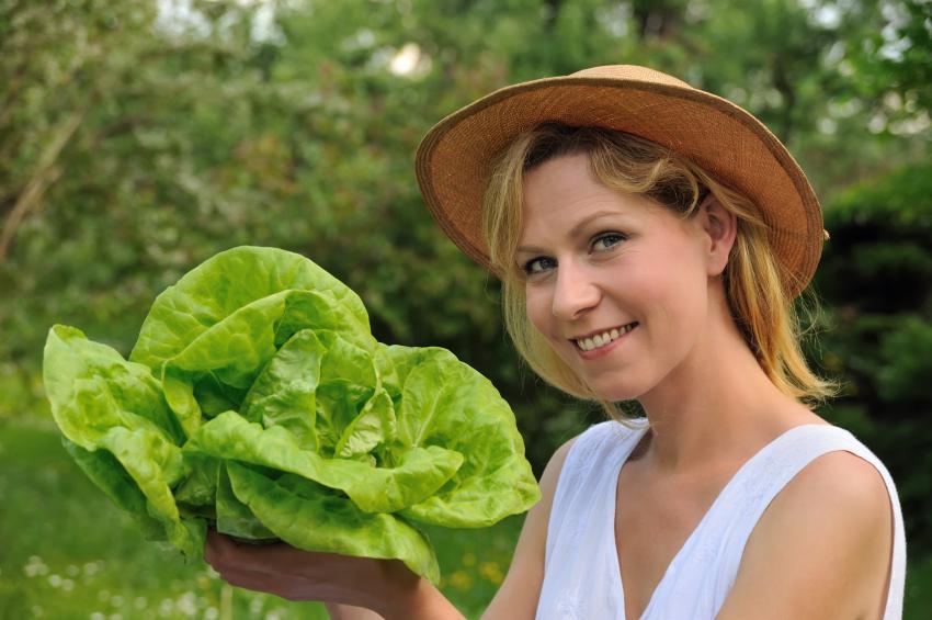 https://cf.ltkcdn.net/vegetarian/images/slide/124974-850x565-lettucenutrition.jpg