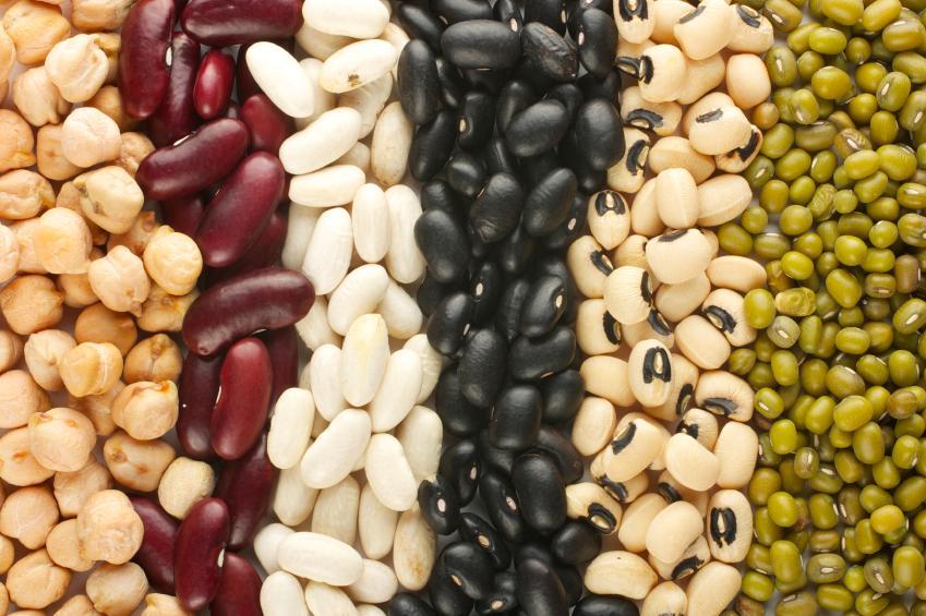 https://cf.ltkcdn.net/vegetarian/images/slide/125002-849x565-Variety_of_Legumes.jpg