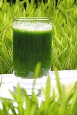 Green Health Drinks vs. Eating Vegetables: Which Is Better for You?