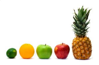 Staples of the fruitarian diet