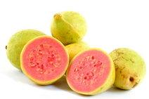 Guava Fruit Facts on Their Nutritional Value & Uses