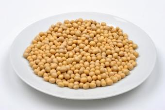 Common Soy Allergy Symptoms and Ways to Avoid Reactions