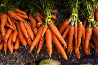 https://cf.ltkcdn.net/vegetarian/images/slide/124971-849x565-carrotnutrition.jpg