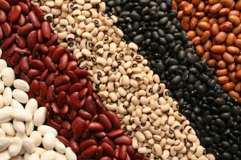 https://cf.ltkcdn.net/vegetarian/images/slide/124977-849x565-BeansSlide.jpg