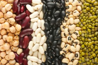 https://cf.ltkcdn.net/vegetarian/images/slide/125002-849x565-Variety_of_Legumes.jpg