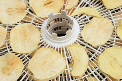 Dehydrator recipes lovetoknow dehydrated foods work well in most recipes forumfinder Gallery
