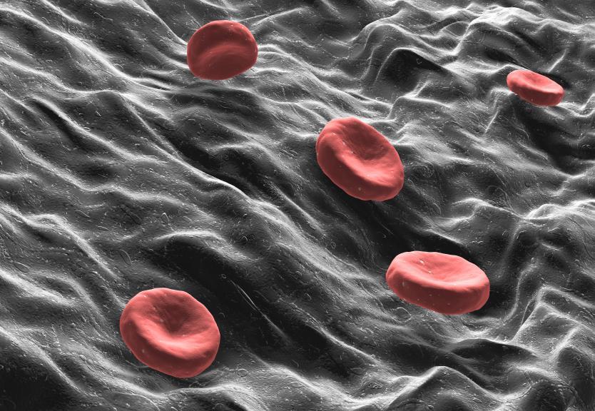 https://cf.ltkcdn.net/vitamins/images/slide/124221-834x576-1-clotting.jpg