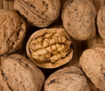 Why You Need Magnesium and Foods High in It