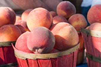 Vitamin rich peaches.