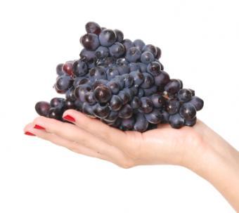 woman holding purple grapes
