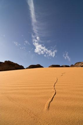 Mali Desert