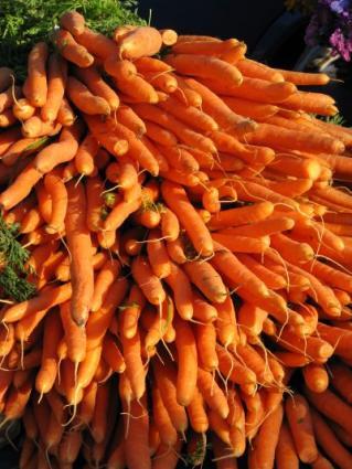Nutrientrich.jpg
