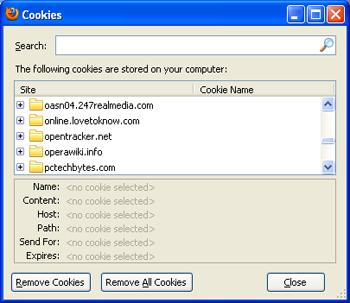 Screenshot of browser cookies