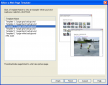 Picasa screenshot of configuring the web page template