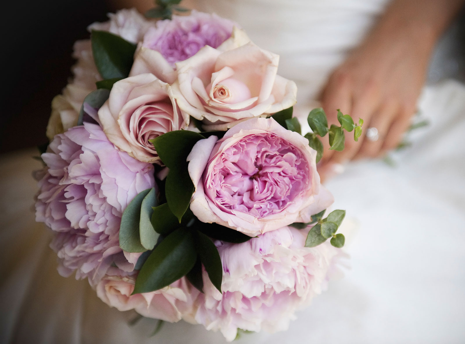 Are Roses Or Peonies More Expensive Lovetoknow