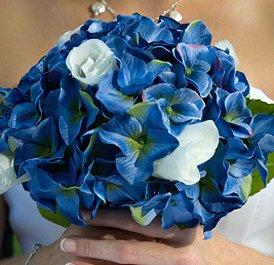 https://cf.ltkcdn.net/weddings/images/slide/105947-274x265-blueflower1.jpg