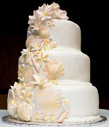 Shell Cake Beach Wedding