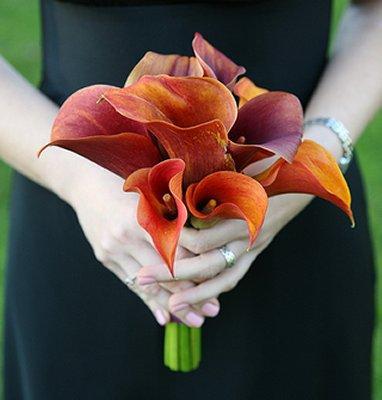 https://cf.ltkcdn.net/weddings/images/slide/106277-382x400-burntorange11.jpg