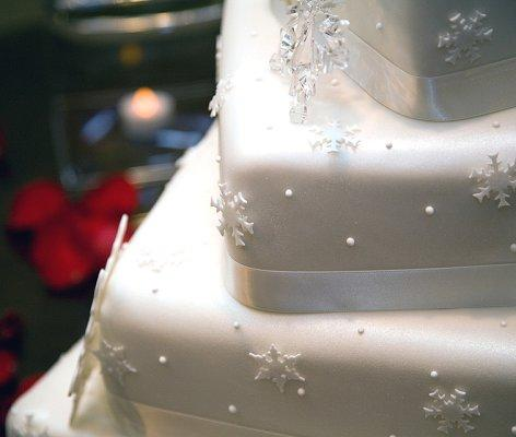 Pictures of winter wedding cakes lovetoknow pictures of winter wedding cakes junglespirit Images
