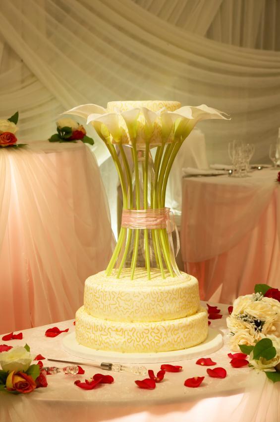 https://cf.ltkcdn.net/weddings/images/slide/106569-565x850-Amazing-Flower-Cake.jpg