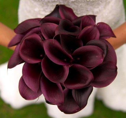 https://cf.ltkcdn.net/weddings/images/slide/106818-426x400-purple2.jpg
