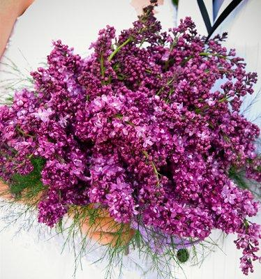 https://cf.ltkcdn.net/weddings/images/slide/106819-374x400-purple1.jpg