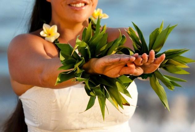 https://cf.ltkcdn.net/weddings/images/slide/131502-631x428r2-Hula-Dancer.jpg