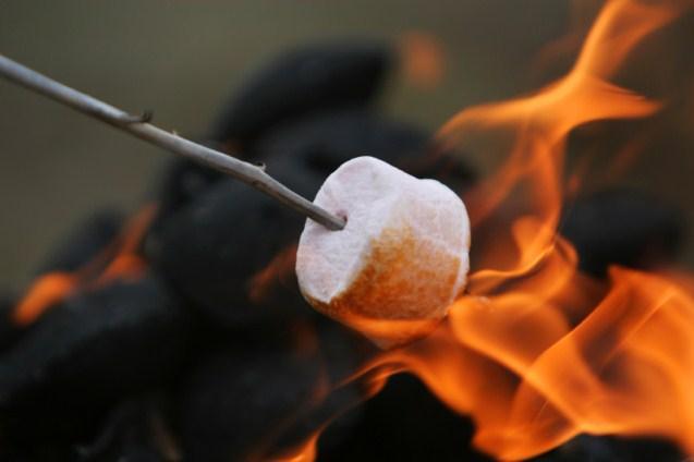 https://cf.ltkcdn.net/weddings/images/slide/131505-637x424r2-Roast-Marshmallows.jpg