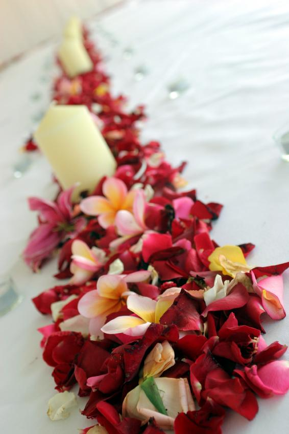 Beau Tropical Reception Decor