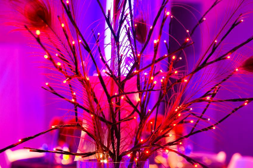 https://cf.ltkcdn.net/weddings/images/slide/169142-850x565-table-lights.jpg