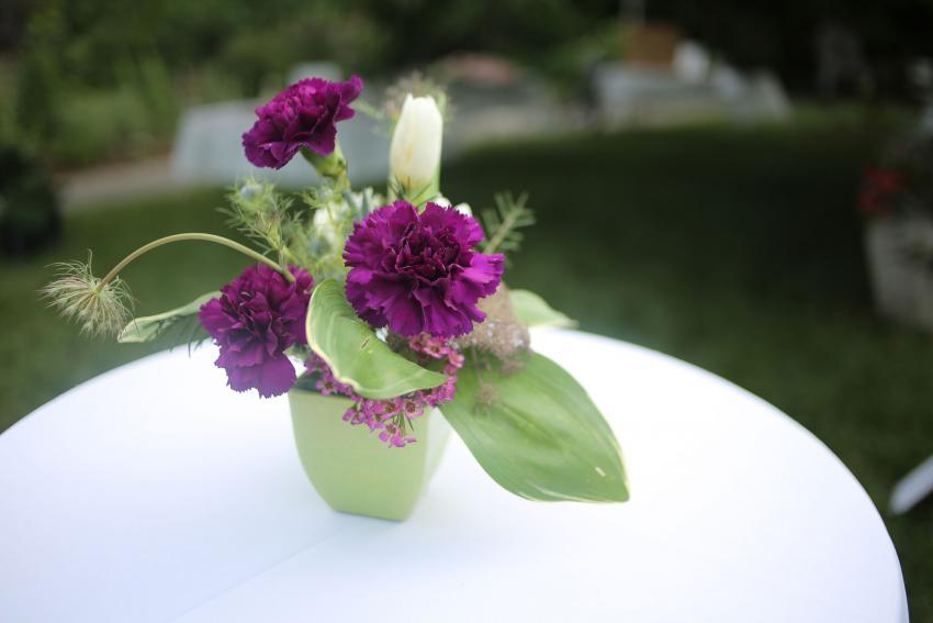 https://cf.ltkcdn.net/weddings/images/slide/238639-850x567-simple-purple-flowers.jpg
