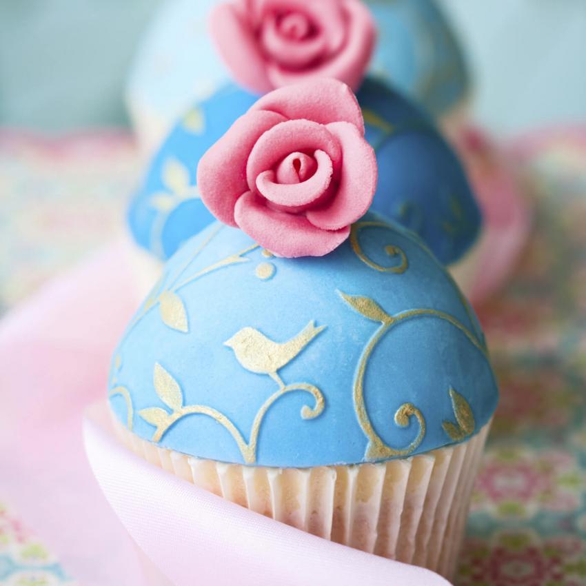 https://cf.ltkcdn.net/weddings/images/slide/240985-850x850-robins-egg-cupcakes-13.jpg