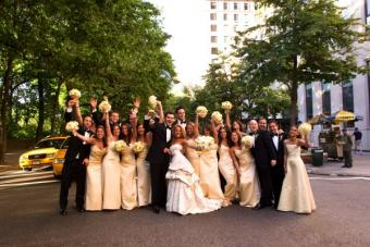 Outdoor portrait of an entire bridal party
